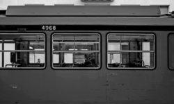 WINTER-MIDSUMMER-Matteo-Ceschi-Artespressione2